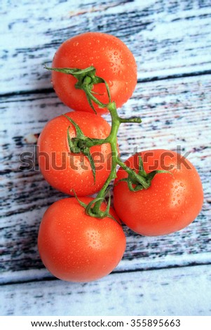 red Tomatoes on the vine wet with a white wooden background/Tomatoes on the vine/vine tomatoes - stock photo