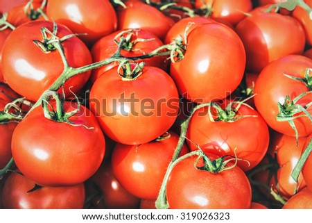red tomatoes - vegetable market - stock photo