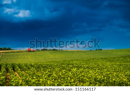 Red truck on grass filed in Japan - stock photo