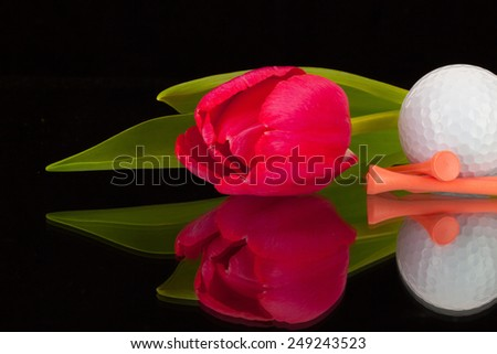 Red tulip and golf equipments on the black glass table - stock photo