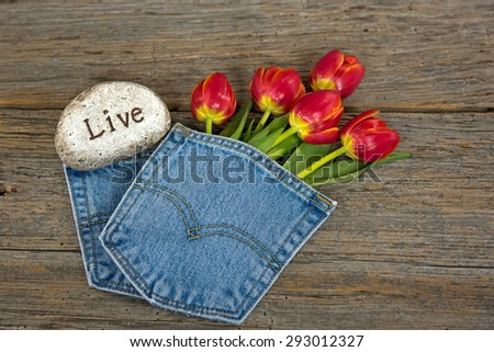 red tulip bouquet in blue jean pocket with message on a stone - stock photo