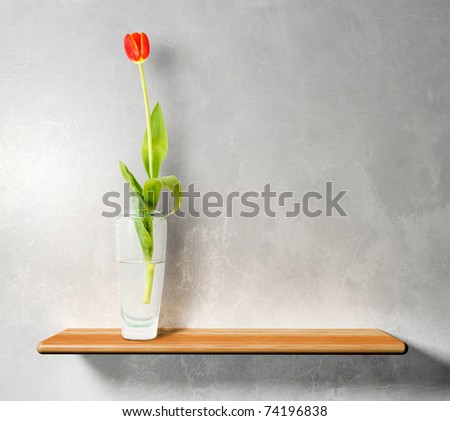red tulip on wooden shelf - stock photo