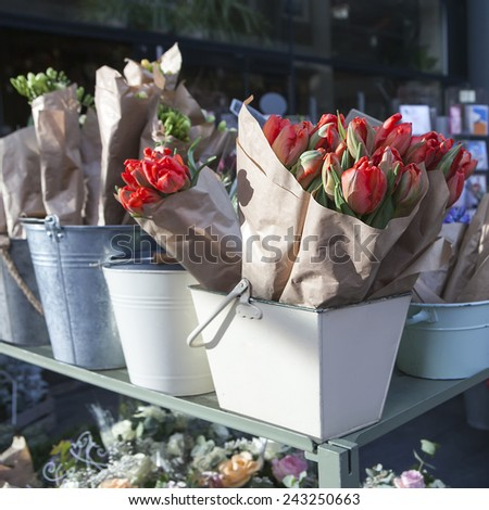red tulips and blue hyacinths  - stock photo