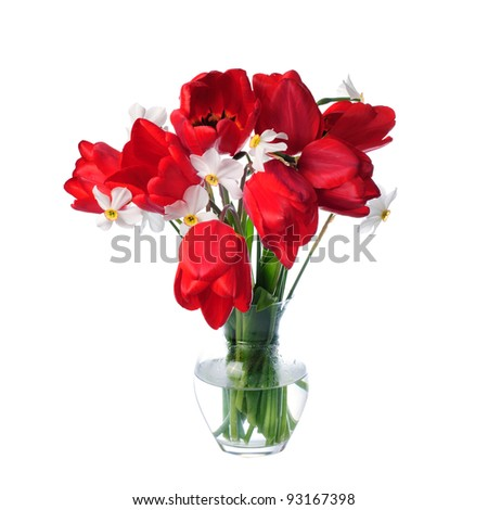 Red tulips and white narcissuses in vase isolated. - stock photo