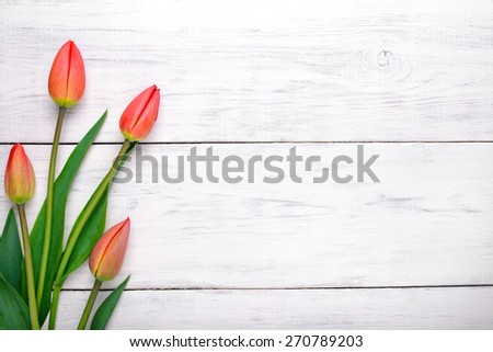 Red tulips flowers on white wooden table. Top view with copy space - stock photo