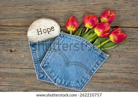 red tulips in blue jean pocket with a stone on rustic barn wood - stock photo