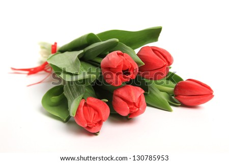 red tulips on a white background - stock photo
