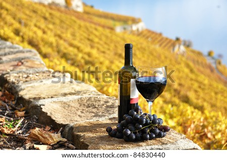Red wine and grapes on the terrace vineyard in Lavaux region, Switzerland - stock photo