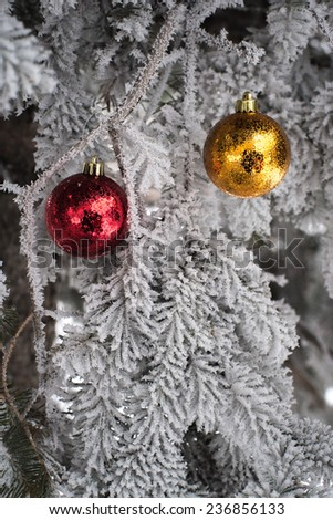 Red yellow and golden Christmas balls in real frozen spruce tree - stock photo