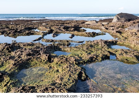 reef - stock photo
