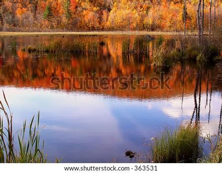 Reflecting Gatineau Park lake - stock photo