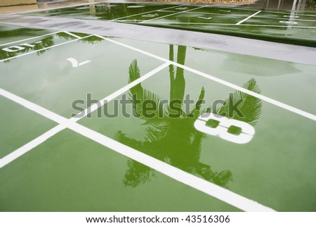 Reflection of a palm tree in water - stock photo