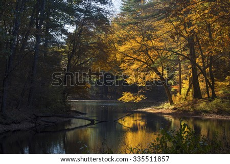 Reflection of brilliant yellow and orange fall foliage, on dark water of lake in Mansfield Hollow forest, Connecticut, with sunlight streaming into the forest on the shoreline. - stock photo