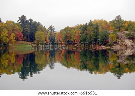 Reflection of colorful forest in lake surface in the overcast day - stock photo