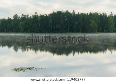 Reflection of forest in a lake in Finnish countryside - stock photo