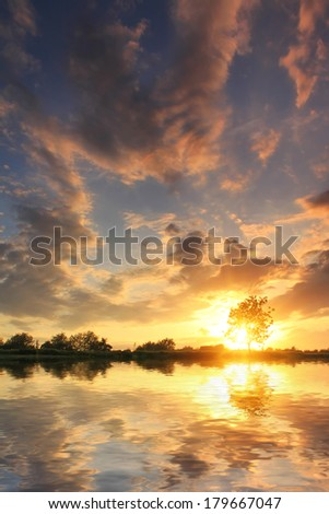 Reflection of the tree in the lake at dawn - stock photo