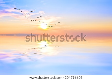 reflections in the calm sea - stock photo