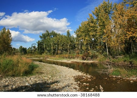 Reflections of trees in stream, coloured leaves, blue skies, Western Alberta, Canada - stock photo