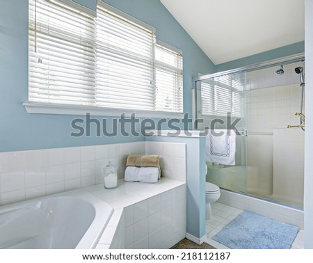 Refreshing bathroom interior with vaulted ceiling, glass door shower and white bath tub with tile trim - stock photo