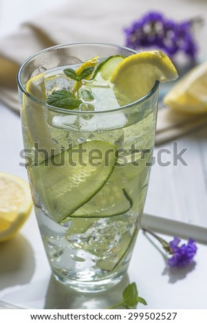 Refreshing summer cocktail - Gin and Tonic with Cucumber and lemon - stock photo