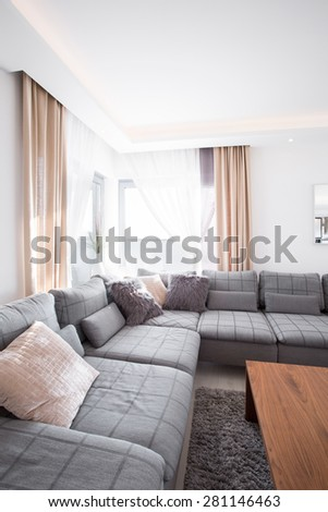Relax space in living room with grey comfortable sofa - stock photo
