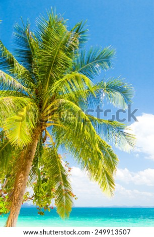 Relaxation In Peace Beautiful Beach  - stock photo