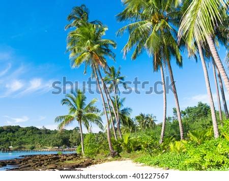 Relaxation In Peace Jungle Lagoon  - stock photo