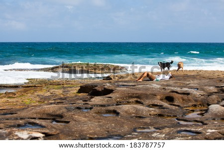 Relaxing time near Bondi beach,Sydney in the sunny day.  - stock photo