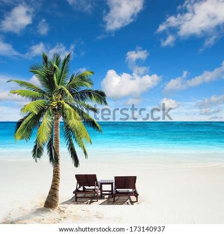 Relaxing under a palm tree on remote beach  - stock photo