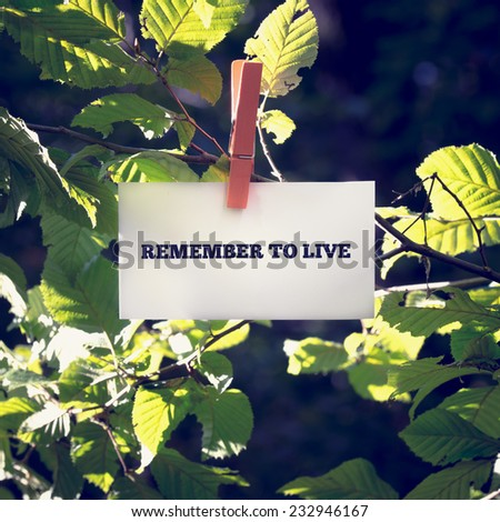 Remember to live inspirational message written on a card attached to a green leafy branch with a wooden clothes peg in sunlight with flare effect. - stock photo