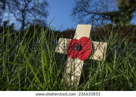 Remembrance - a memorial day observed in the Commonwealth of Nations member states since the end of the First World War to remember the members of their armed forces who have died in battle.  - stock photo