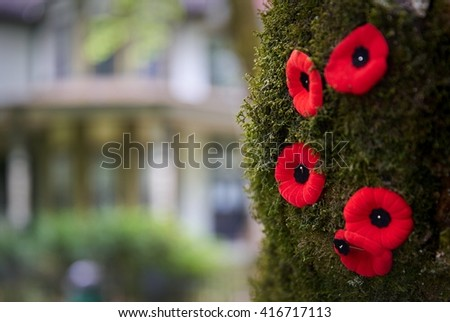 Remembrance Poppies.   Remembrance Day Poppies on a tree for November 11.                           - stock photo