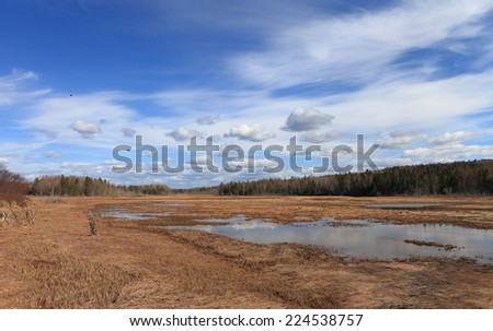Remote wetland landscape - stock photo