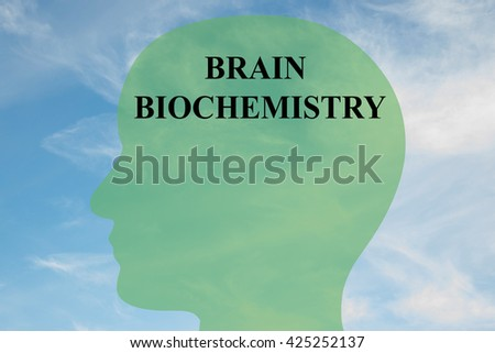 """Render illustration of """"BRAIN BIOCHEMISTRY"""" script on head silhouette, with cloudy sky as a background. Human brain concept. - stock photo"""