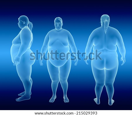Render Illustration of Obese Woman - stock photo