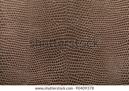 Reptile leather texture background - stock photo