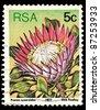 REPUBLIC OF SOUTH AFRICA - CIRCA 1977: A stamp printed in Republic of South Africa shows image of Protea cynaroides King Protea), circa 1977 - stock photo