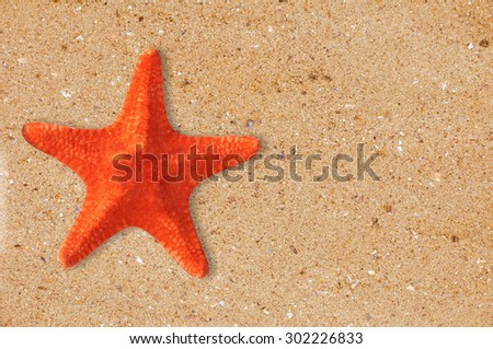 Res starfish on the yellow sand background - stock photo