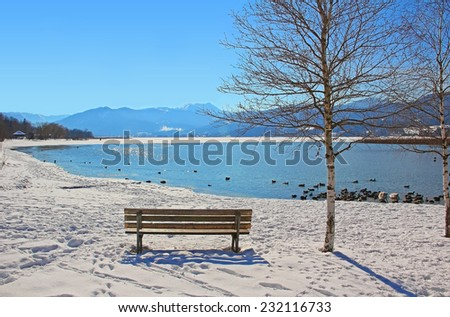 resting bench beside birch tree, view to lake tegernsee in winter landscape bavaria - stock photo