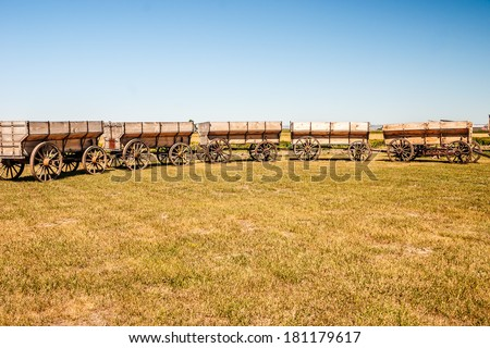 Restored, vintage grain wagons pulled into a circle to resemble covered wagons circled at night or when they feared attack at the Big Horn County Historical Museum in Hardin, Montana.  - stock photo