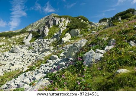 Retezat Mountains - stock photo
