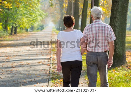 Retire couple in love and fall morning in park - stock photo