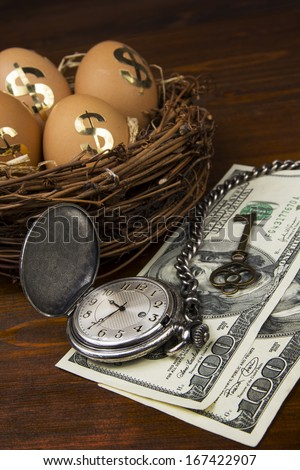 Retirement planning with nest egg - stock photo