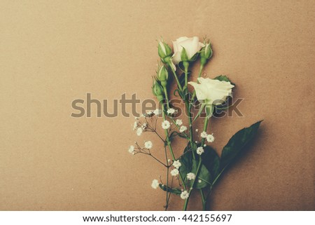 retro background of pastel belyyh and pink roses on the old paper, svobonoe space, large size, high quality - stock photo