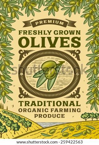Retro olives poster - stock photo