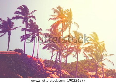Retro photo of tropical beach, India - stock photo