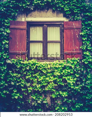 Retro Style Photo Of Shutters On A Window On A House Covered In Ivy - stock photo