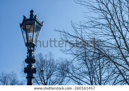 retro style street lamppost with tree branches in winter - stock photo