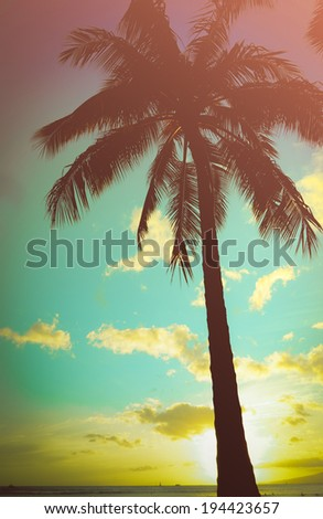 Retro Styled Lone Palm Tree In Hawaii - stock photo