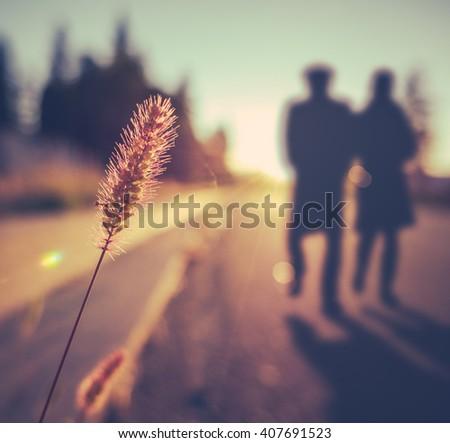 Retro Vintage Soft Focus Romantic Senior Couple Walking At Sunset In Summer - stock photo